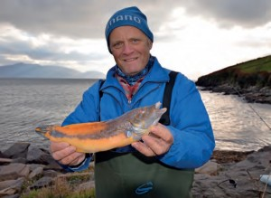A Dingle Cuckoo Wrasse for well-known angler and writer Dave Lewis, 2012