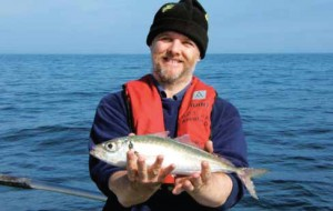 The only specimen Scad for 2008 fell to Adrian Rahill