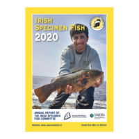 ISFC Report 2020 Online Now